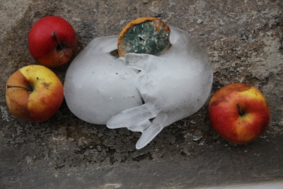 Alice Meyer – Le temps gelé