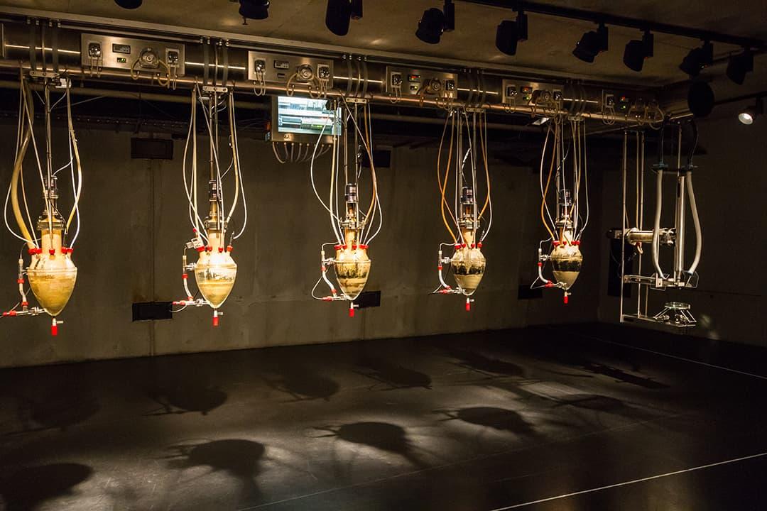 L'œuvre Cloaca Professional de Wim Delvoye (2010) au MONA